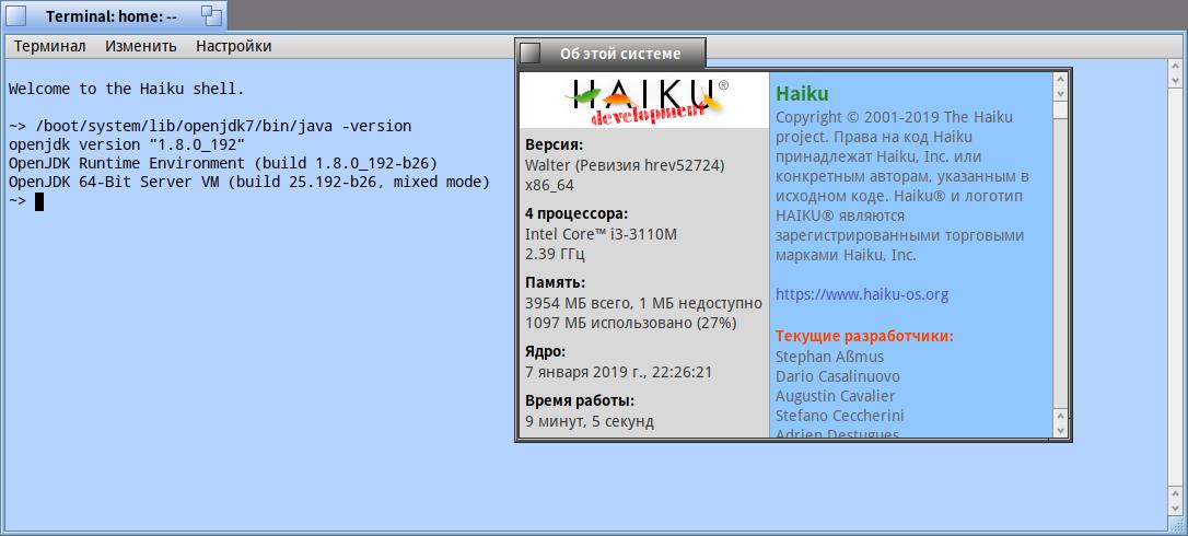 Openjdk7_bin-1 7 u80_b32-1-x86_64 hpkg? - Help - Haiku Community